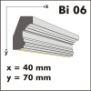 Bi 06