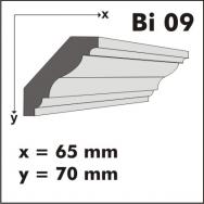 Bi 09